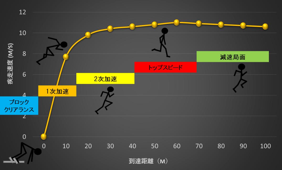 100m走の特徴とトレーニングの視点(100m走の練習方法) - 陸上競技の ...