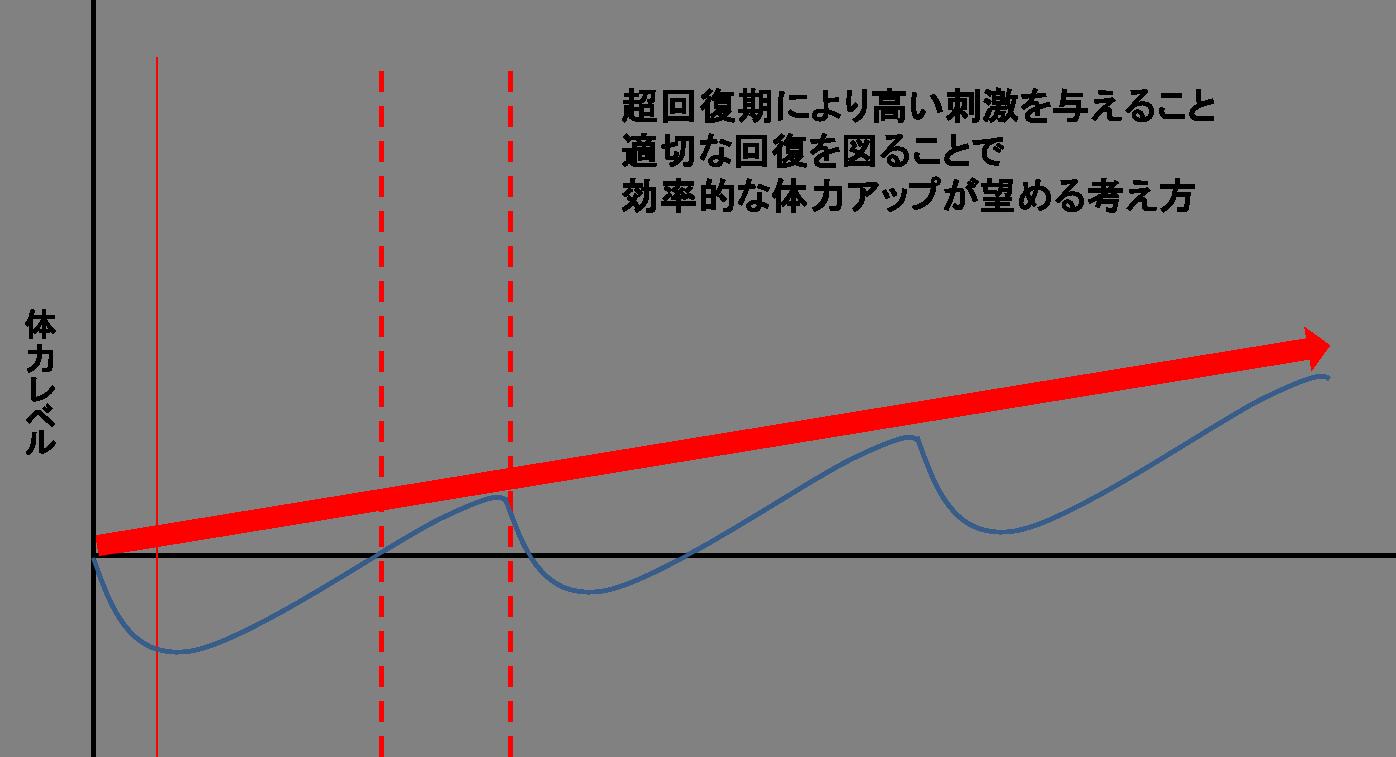 トレーニングの原理③(可逆性の原...